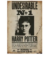 Harry Potter Poster: Undesirable Number One