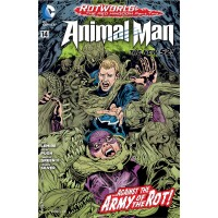 Animal Man 14 (Vol. 2)