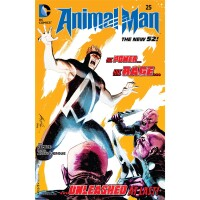 Animal Man 25 (Vol. 2)
