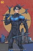 Nightwing 48 (Vol. 4) Rebirth - Variant (Kenneth Rocafort)