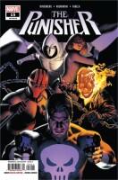 Punisher 15 (Vol. 12)