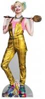 Birds of Prey Pappaufsteller (Stand Up) - Harley Quinn...