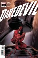 Daredevil 24 (Vol. 6)