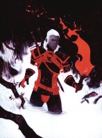 Witcher Fading Memories 4 (Of 4) Jeremy Wilson Variant...