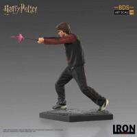 Harry Potter Resin-Statue Harry Goblet of Fire (25 cm)
