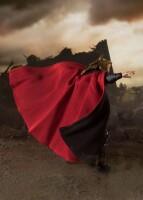 Avengers: Endgame S.H. Figuarts Actionfigur Thor Final...