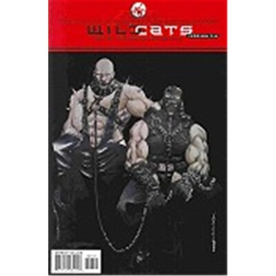 Wildcats Version 3.0 7