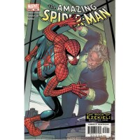 Amazing Spider-Man 506 (Vol. 1)
