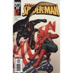 Marvel Knights Spider-Man 18