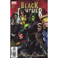 Black Panther 14 (Vol. 4)