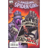 Amazing Spider-Girl 17