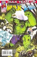 Hulk Team-Up