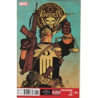 Trial of Punisher 1