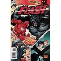 Flash 240 (Vol. 2)